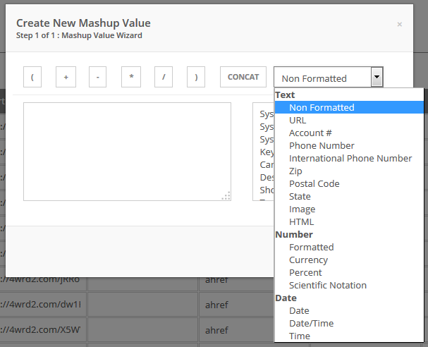 Mashup Field Formatting