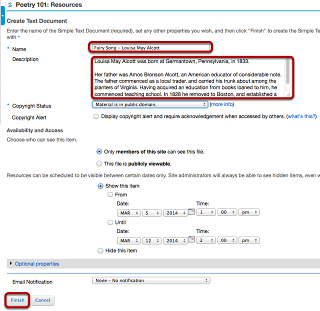 Enter a Name for the text document, add additional data if needed, then click Finish.