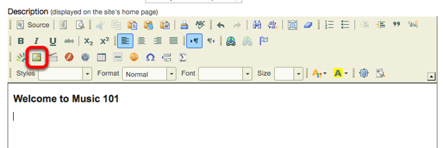 Place your cursor in the Description box and click the Insert Image icon on the Rich Text Editor.