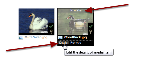"Example: Student uploaded media to Site Library (initially ""Private"")"