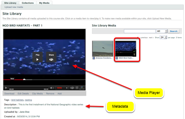 To play the media, click the thumbnail and the media will be displayed in the media player on the left.