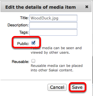 "Checkmark ""public"", then click Save"