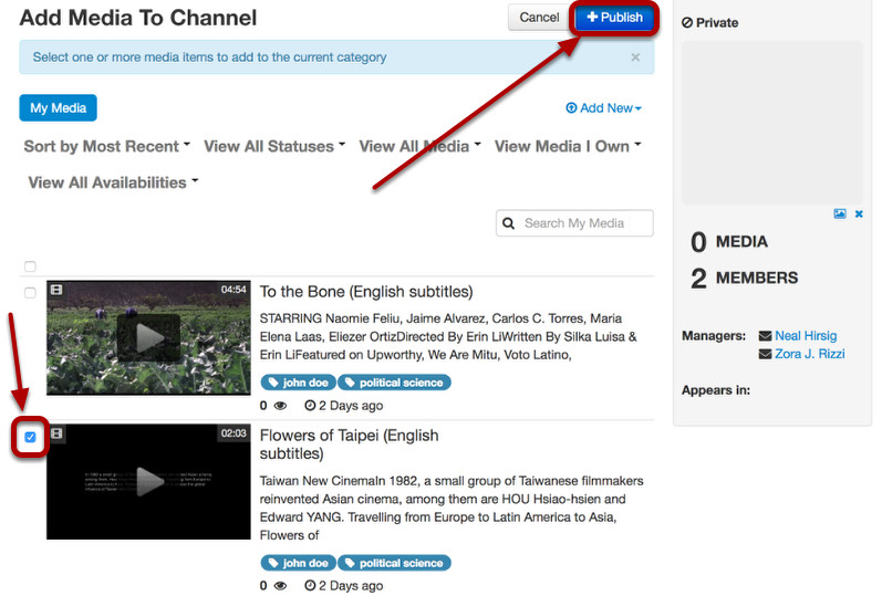 Checkmark the videos you want to add to the channel, then click Publish
