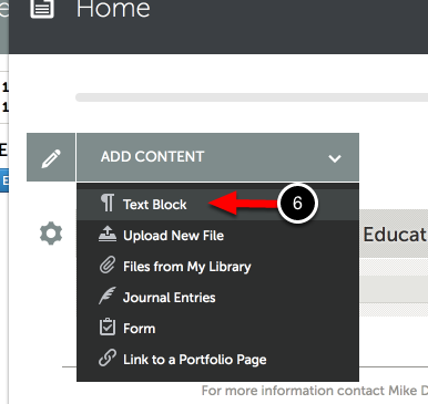 Step 2: Access 'Add Text' in Portfolio