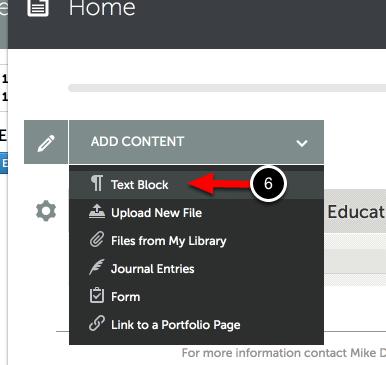 Step 2: Access 'Add Text' in Portfolio
