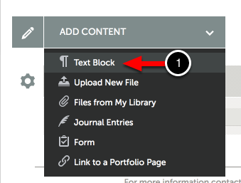 Step 1: Select to Add Text