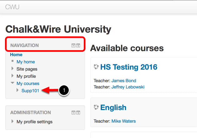 Step 2: Access Chalk & Wire via Assignment