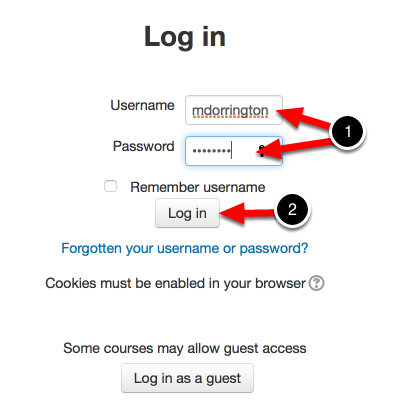 Step 1: Log into Your Moodle Account