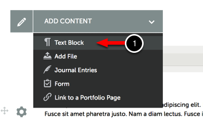 Step 1: Click on the Text Block Button