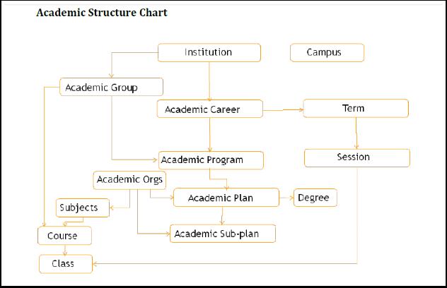 Academic Structure flow chart