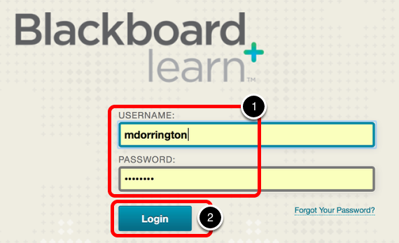 Step 1: Log into Your Blackboard Account