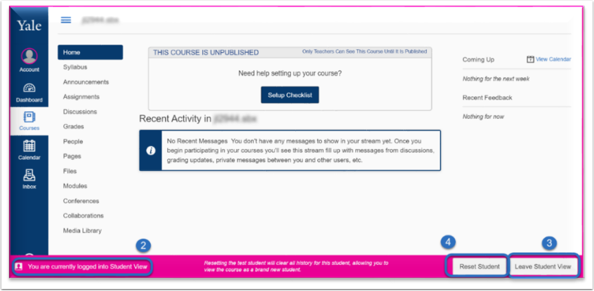 You will see a bright pink border around the screen to indicate you are in student view.