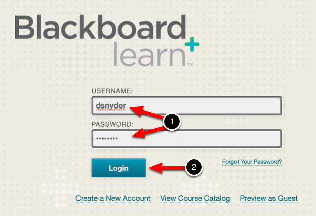 Step 1: Log In to Blackboard