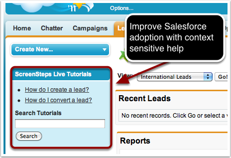 3. Add contextual help to Salesforce