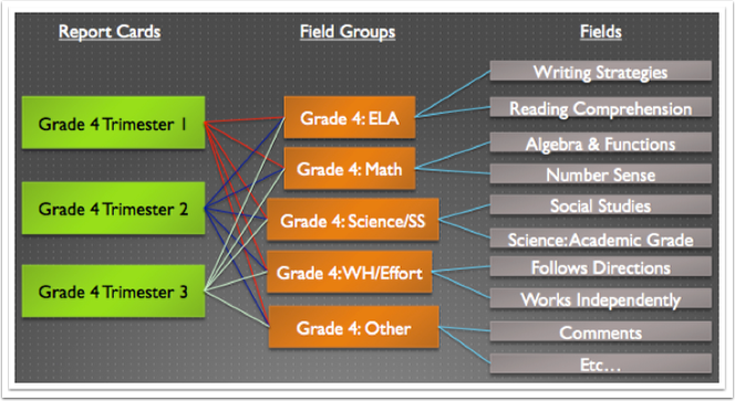 Field Group and Fields Overview