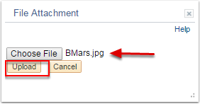 File Attachment section