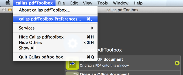 Go to the update check in the preferences