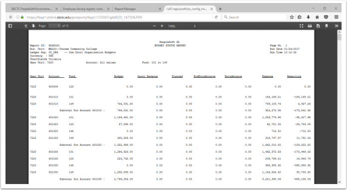 Budget Status Report example