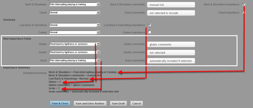 1.7 The image here shows the Tick importance work flow AND the dropdown scoring working in the same Event Form pulling through into the Important Summary Field