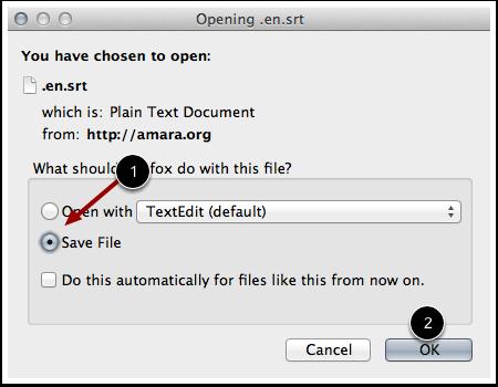 Save Subtitle File