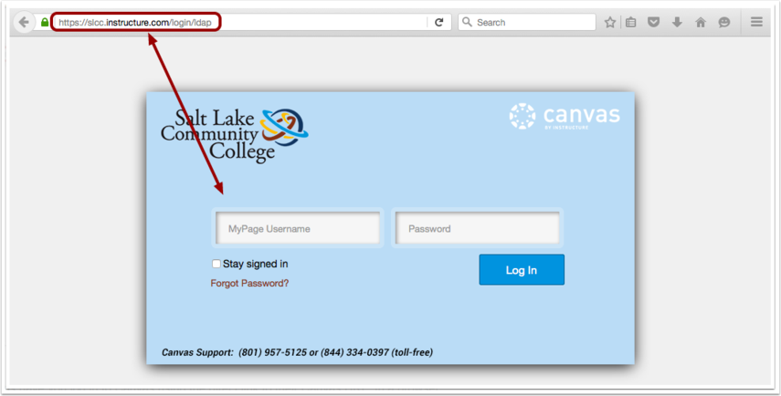 经由机构 URL 访问 Canvas