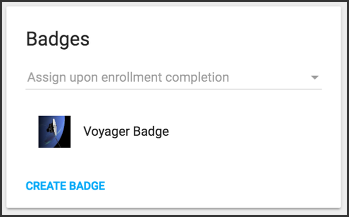Badges showing Voyager Badge and option to create badges.