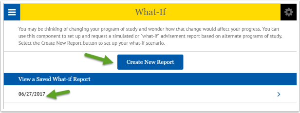 Create New Report button