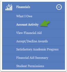 Account Activity option