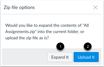 Choose ZIP Option