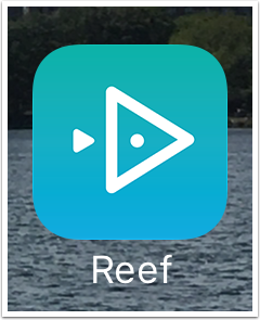 Reef icon tapped