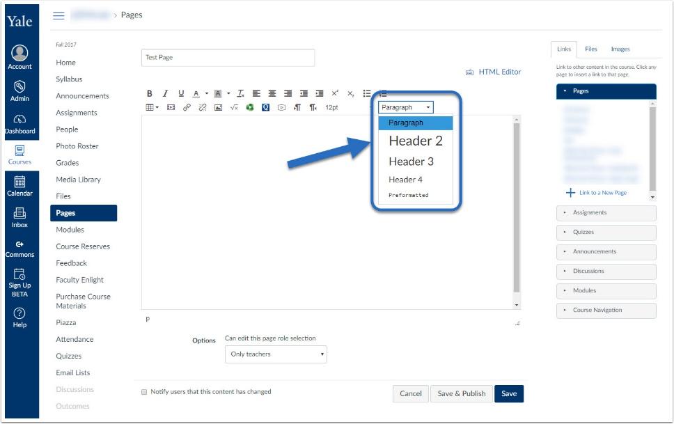 screenshot of header options
