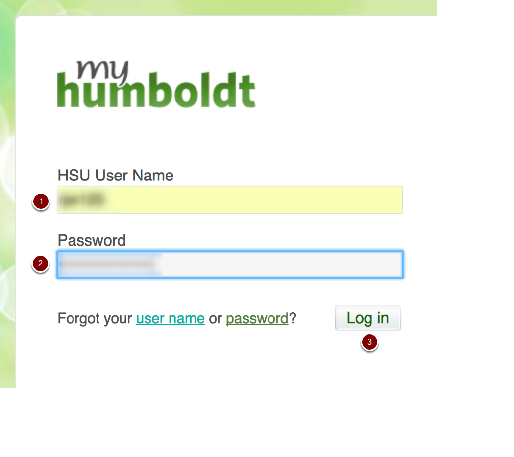 My humboldt login screen
