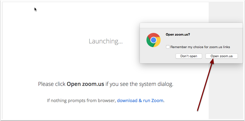 New window prompting user to open zoom with their HSU login.