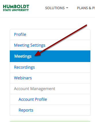 Zoom navigation window, highlighting meetings tab