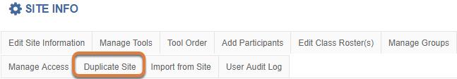 Duplicate Site option
