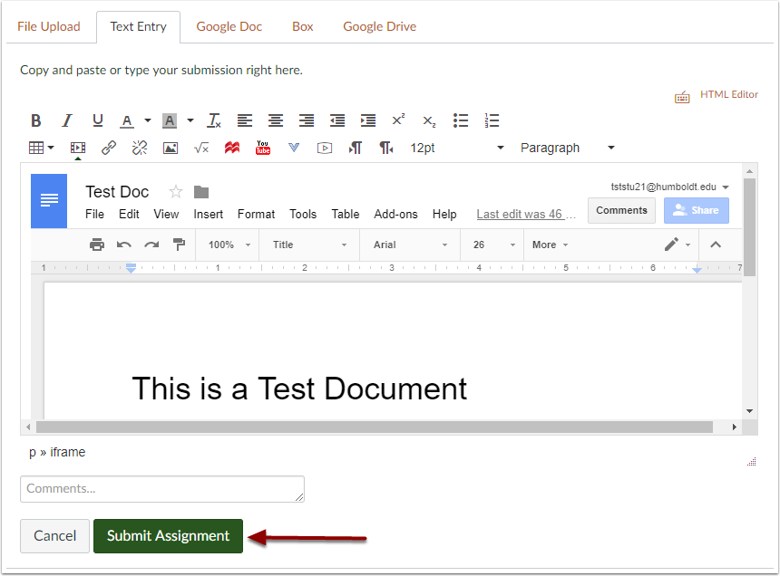 Canvas assignment text entry box with embedded Google Doc