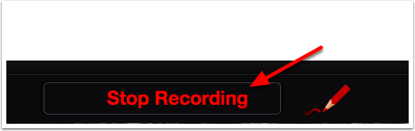 VoiceThread doodle option highlighting stop recording