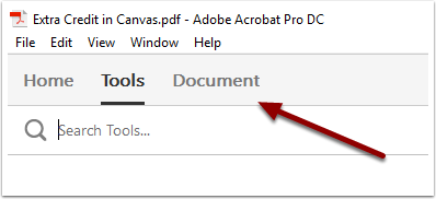 Acrobat Pro Document Tab