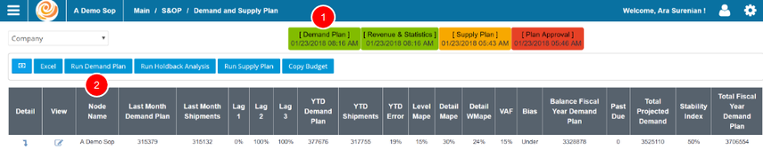Run, Review, and Edit Demand Plan