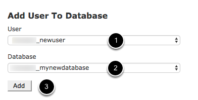 Assign the User to the Database