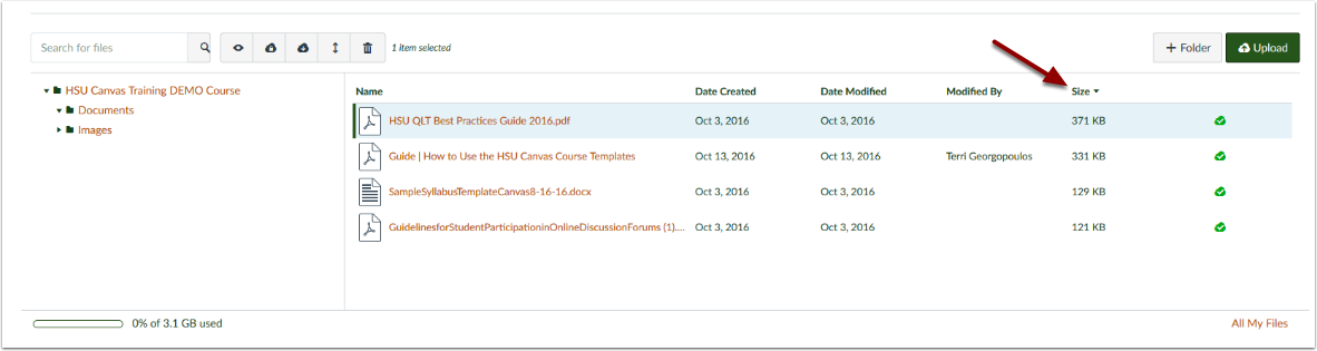 Canvas Course Files page showing file size column