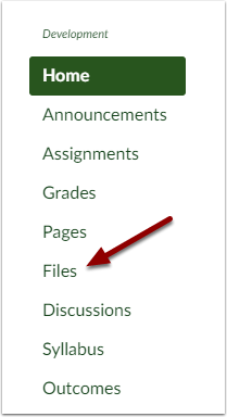 Canvas course navigation bar showing Files button
