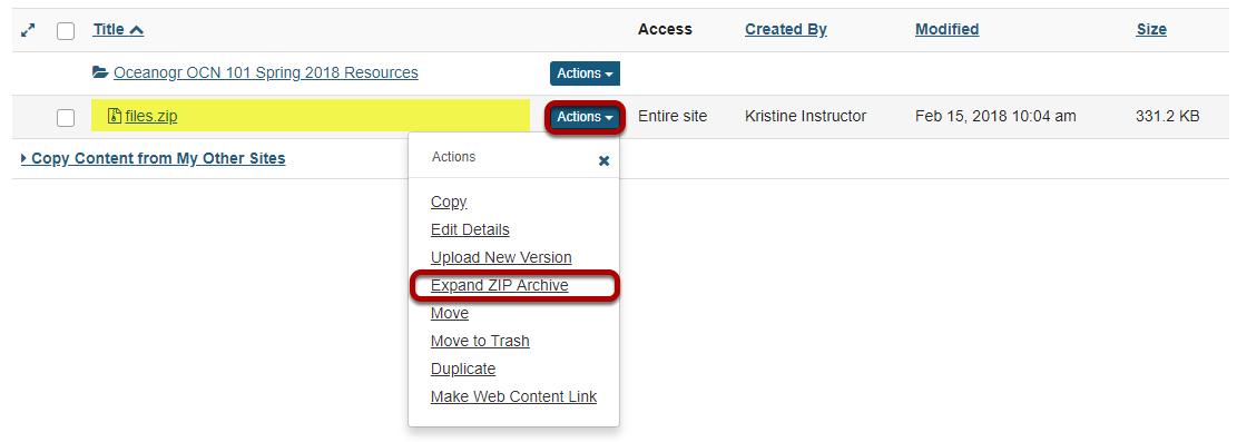 Click Actions, then Expand Zip Archive.