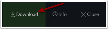 Canvas file Download button