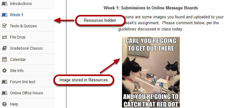 Image of lesson page with embedded content