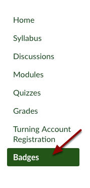 Canvas course Badges button (Badgr)