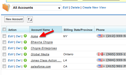 Choose the Account with the Duplicate Contacts