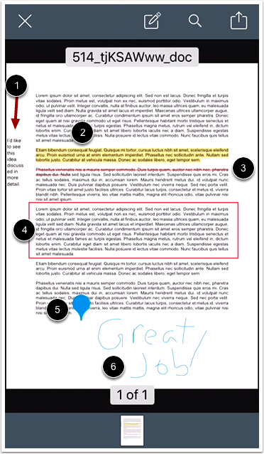 View Document Annotations