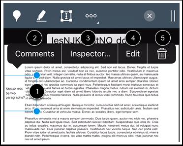 Modify Text Annotation