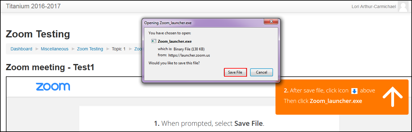Save File button highlighted